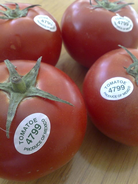 Tomatoes produced in Mexico