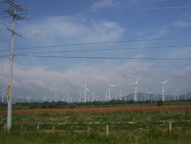Approaching Jiutepec, an impressive number of windpower electric generators!