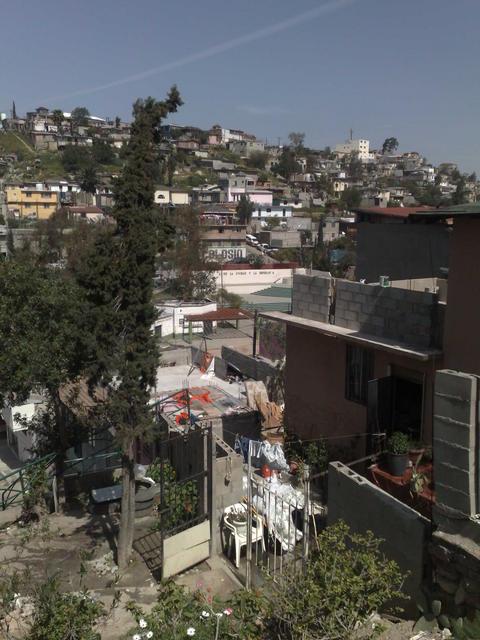 Lomas Taurinas, Tijuana