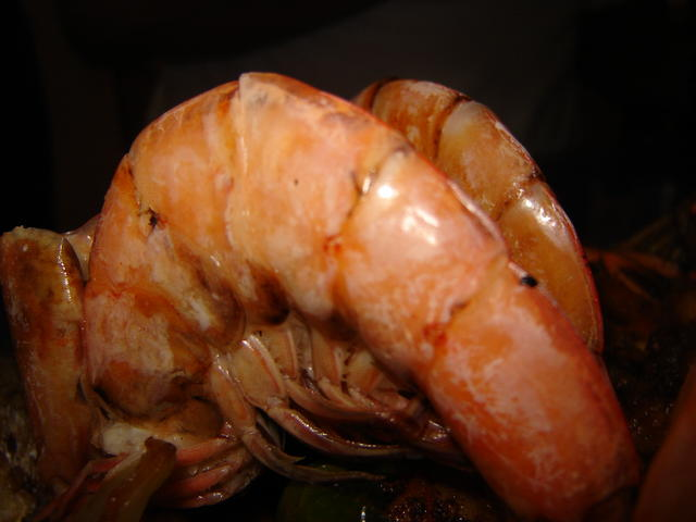 Now, _THAT_ is a shrimp!