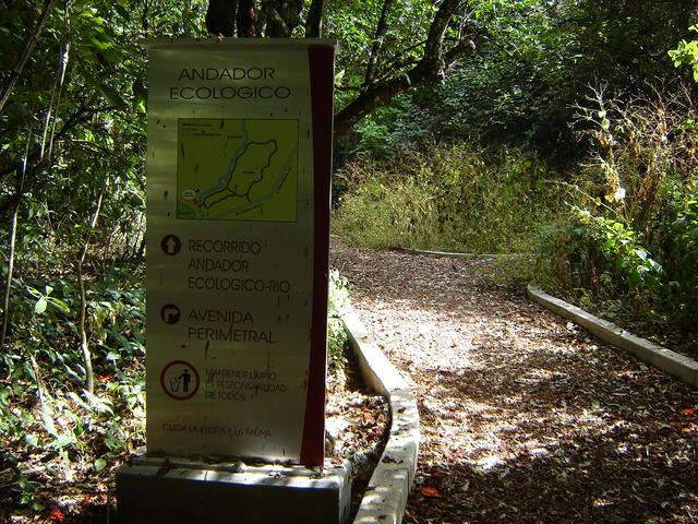 Ecological walkway
