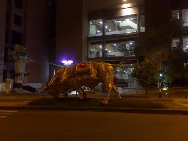 Bull at Manizales