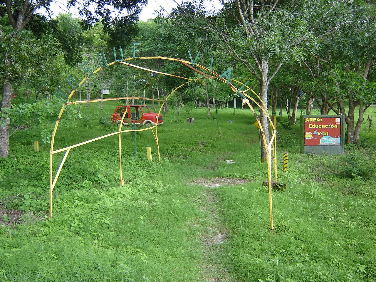 Estelimar's vial education forest