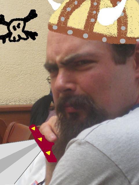 Gunnar the viking Wolf